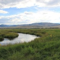 Restoring Wetlands at O'Dell Creek