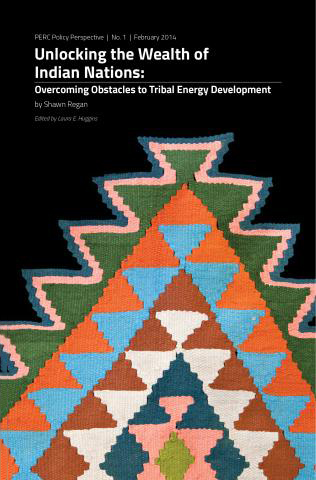Unlocking the Wealth of Indian Nations: Overcoming Obstacles