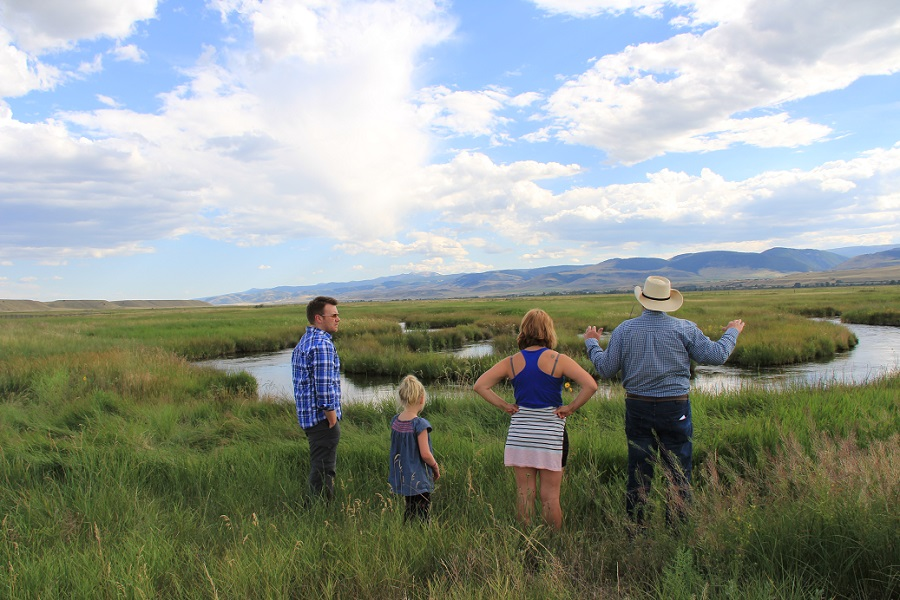 O'Dell Creek Restoration Project, Madison Valley, Montana