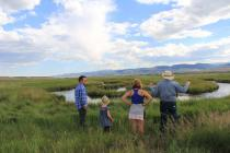 ODell Creek Restoration Project, Madison Valley, Montana